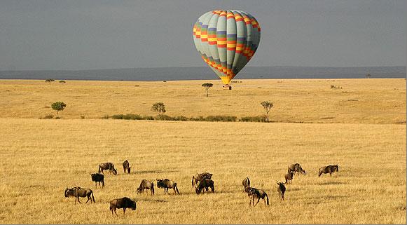 Masai Mara e o Serengeti, Quénia e Tanzânia