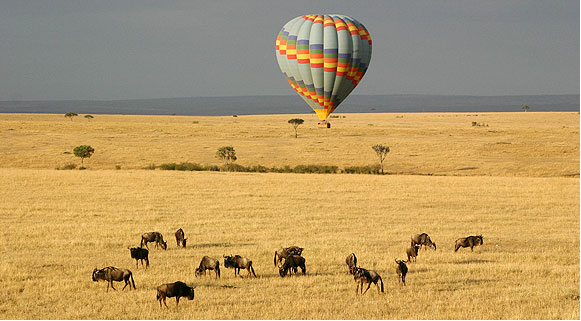 Masai Mara e o Serengeti, Qunia e Tanznia